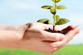 Lập báo cáo giám sát môi trường tại Đồng Nai