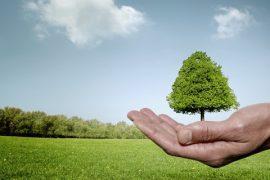 Trung tâm quan trắc môi trường Tân Huy Hoàng