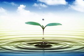 """Xây dựng """"cuộc đua""""  truyên thông tài nguyên nước"""