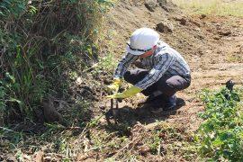 Quy trình lấy mẫu đất Quan trắc tại hiện trường hiệu quả.