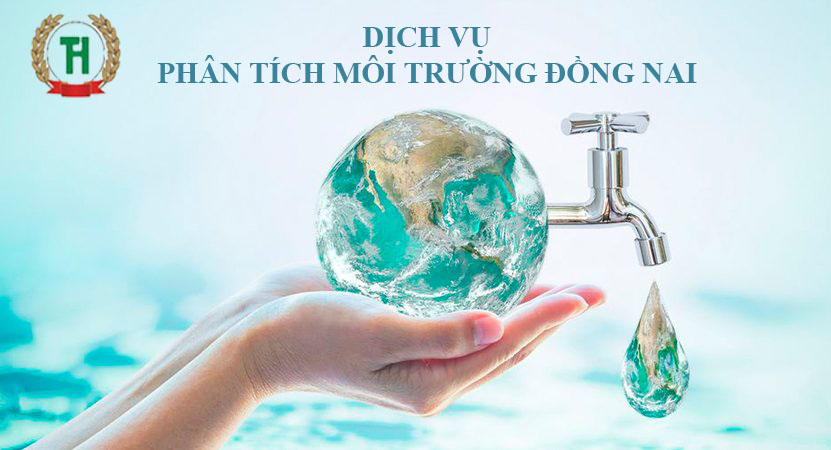 Phân tích môi trường tại Đồng Nai