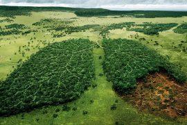 Quy định mới về quan trắc môi trường TCVN 2020