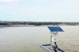 Giải cứu thủy sản bằng quan trắc môi trường nước