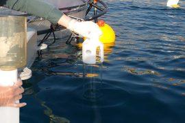 Quan trắc và phân tích nước biển