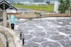 Quan trắc và phân tích nước thải