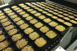 Xử lý nước thải chế biến mì ăn liền