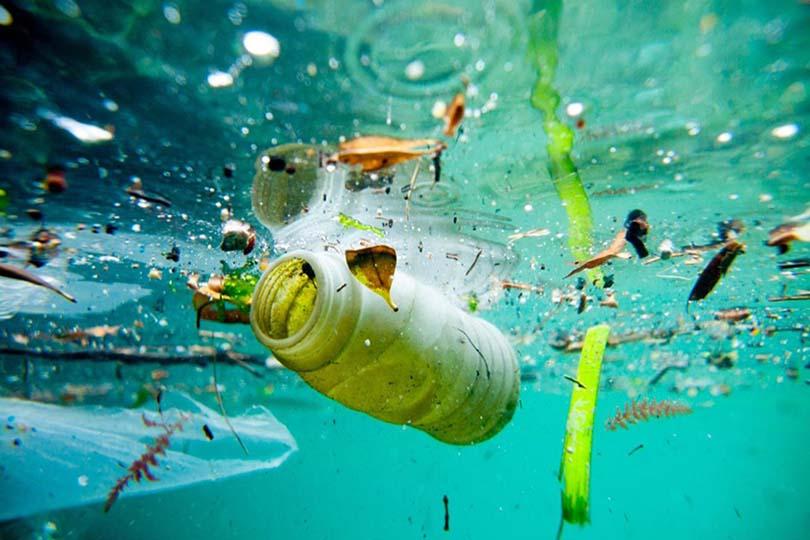 Tại sao phải xử lý nước thải