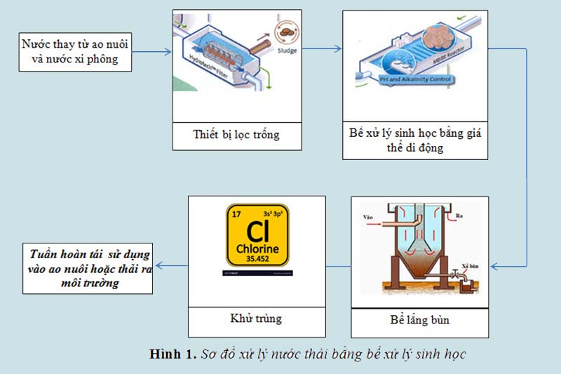 Xử lý nước thải nuôi tôm