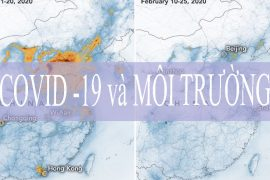 So sánh khủng hoảng covid 19 với Biến đổi khí hậu