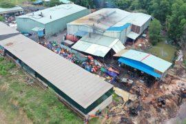 Biên Hòa: Ô nhiễm môi trường từ cơ sở tái chế mỡ bò công nghiệp