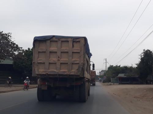 Những xe lớn vận chuyểnđất khai thác trái phép