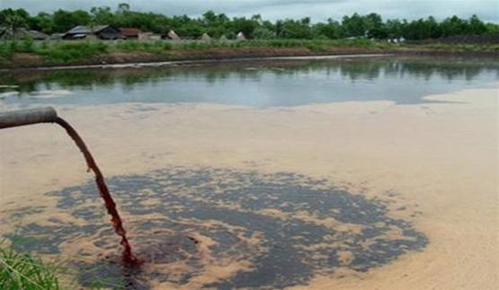 Môi trường nước bị ô nhiễm