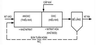 nitơ trong nước thải